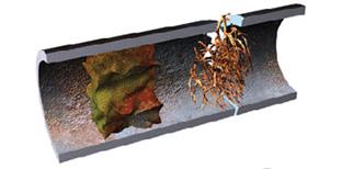Identify Damaged Plumbing