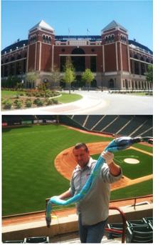 Texas Rangers Ballpark in Arlington drain habilitation